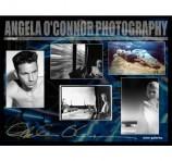 Angela O'Connor Photography